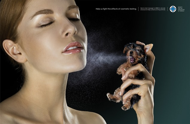 Imperdible: Not to animal testing!