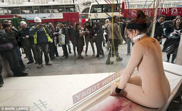 No a la experimentacion con animales (2)