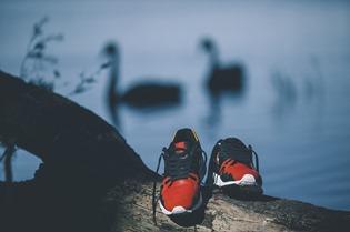 Le coq sportif black swan (7)