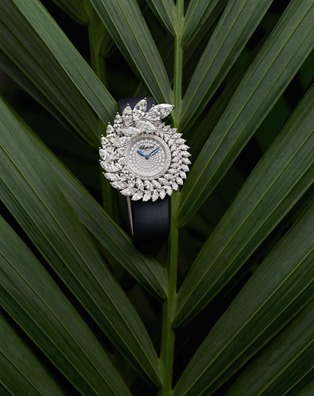 Cannes Chopard (4)
