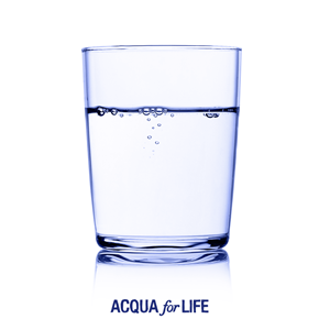 #1dia10litros de Acqua for Life (2)