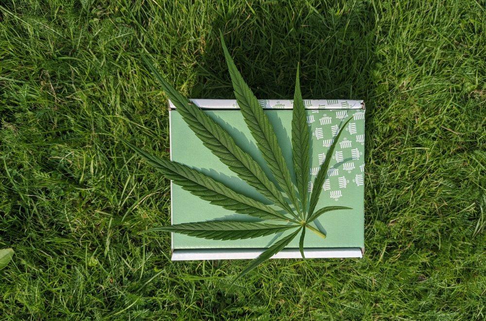 marihuana legal estilo de vida